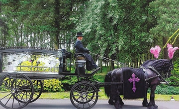 Horse-drawn Carriages | S Gascoigne & Sons Funeral Directors | Birmingham and Solihull